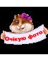 Янколятки (В005)