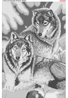 Вовки сірі (3093)