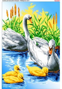 Лебедина родина (3097)