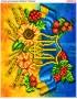 Схема вишивки бісером (хрестиком) «Україна (B224)»