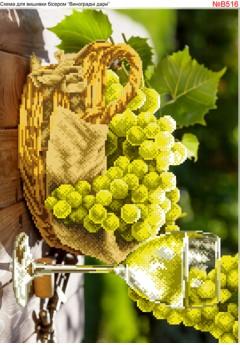 Вино і виноград (B516)